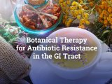 Botanical Therapy for Antibiotic Resistance in the GI Tract