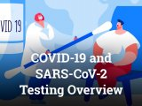 COVID-19 and SARS-CoV-2 Testing Overview